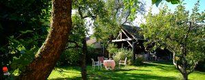 Le jardin verdoyant du Zinck hôtel